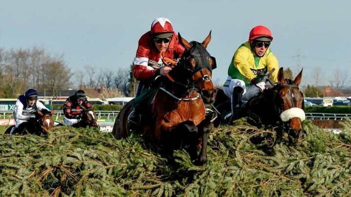 Tiger Roll entered for shock racing return after missing Grand National defence due to row over weight