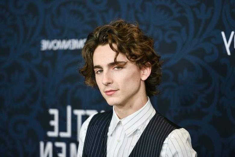 4 Timothée Chalamet Movies Worth Adding to Your Collection