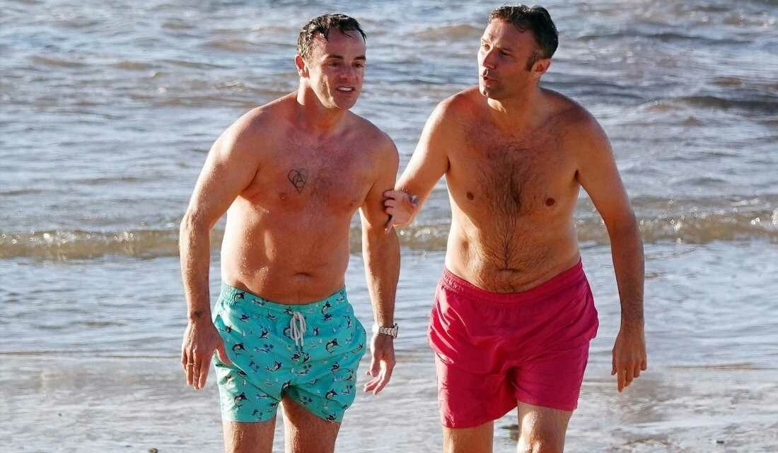 Ant McPartlin takes his best MATE on honeymoon with him and Anne-Marie – and it's not Dec