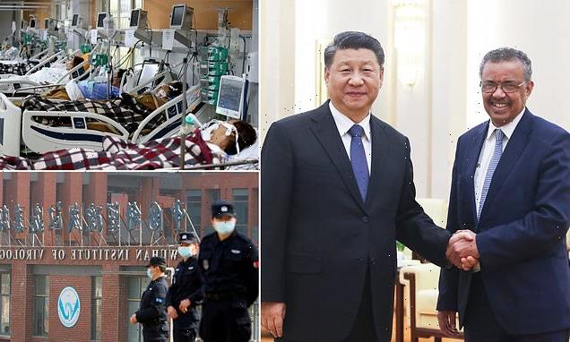 China's secret deal with WHO to hide origins of Covid