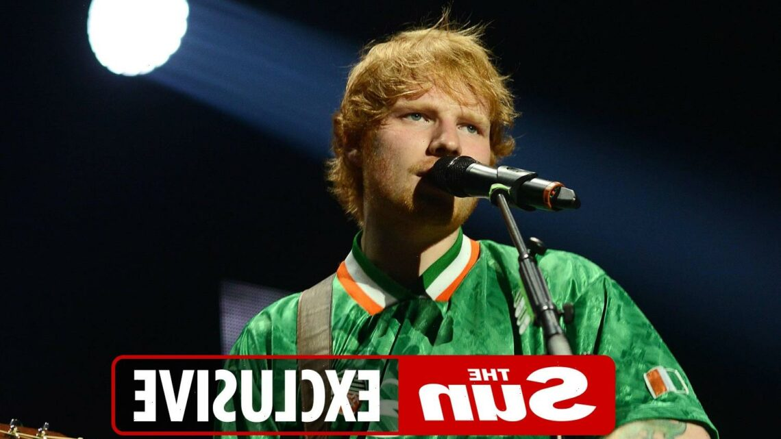 Ed Sheeran and Declan Rice performed Wonderwall duet during Three Lions' Euro bash, Tyrone Mings reveals