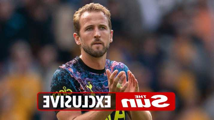 Harry Kane tells Spurs chairman Daniel Levy AGAIN he wants Man City transfer as striker feels hung out to dry by club