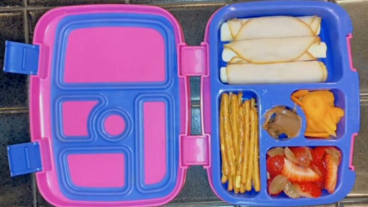 Mum shows off her kid's packed lunches for primary school but is accused of 'child abuse' & 'overfeeding' her child