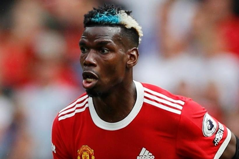 Paul Scholes predicts Paul Pogba WILL sign new contract now that Man Utd look like team that can 'win trophies'