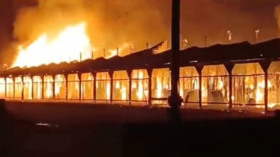 Racehorse that escaped track onto motorway rescued AGAIN as huge fire breaks out at track and racing cancelled