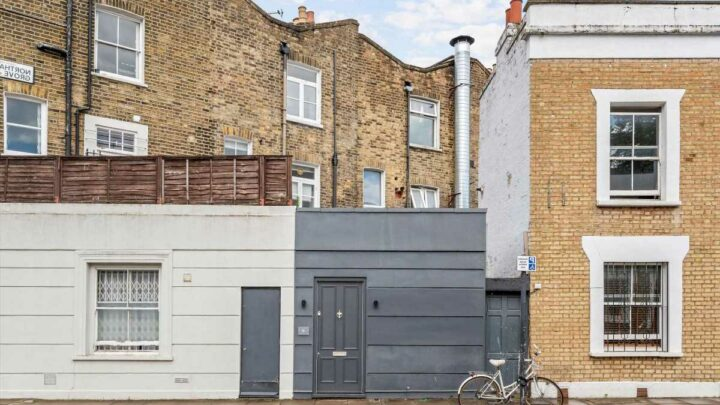 This London home looks like a shed but packs in impressive luxury kitchen, living room and two bedrooms for £750,000