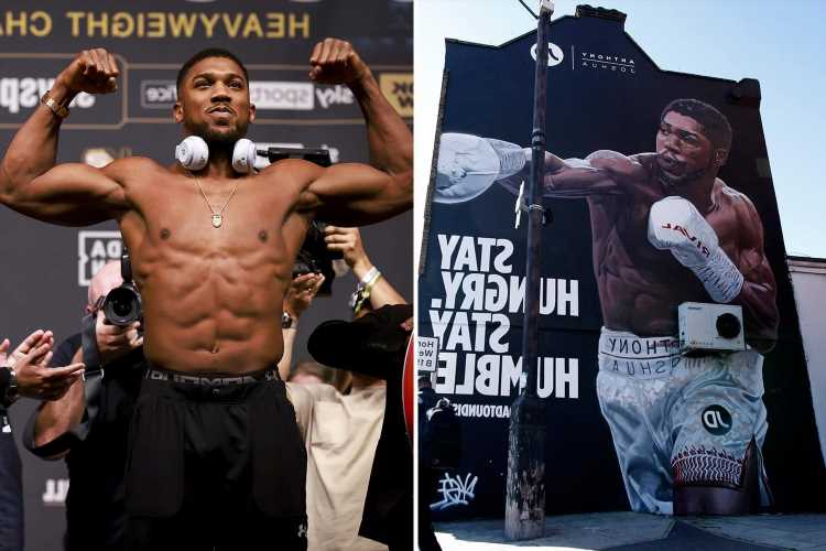 Anthony Joshua 'honoured' as incredible 40ft mural unveiled in Tottenham a stone's throw from the stadium for Usyk fight