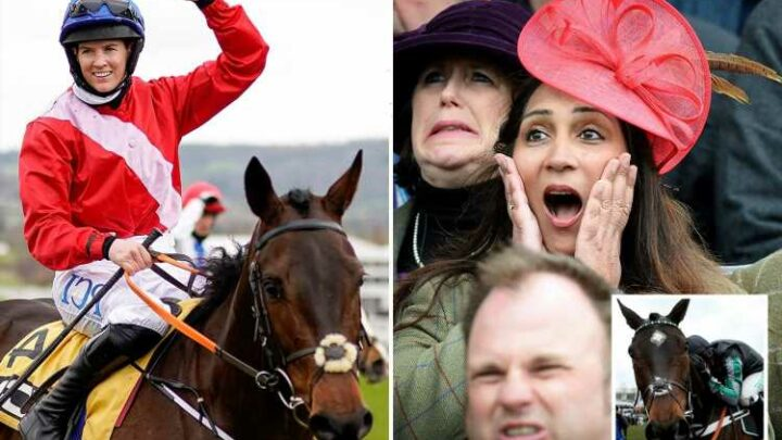 Cheltenham Festival starts six months TODAY with tickets selling out already and betting markets really hotting up