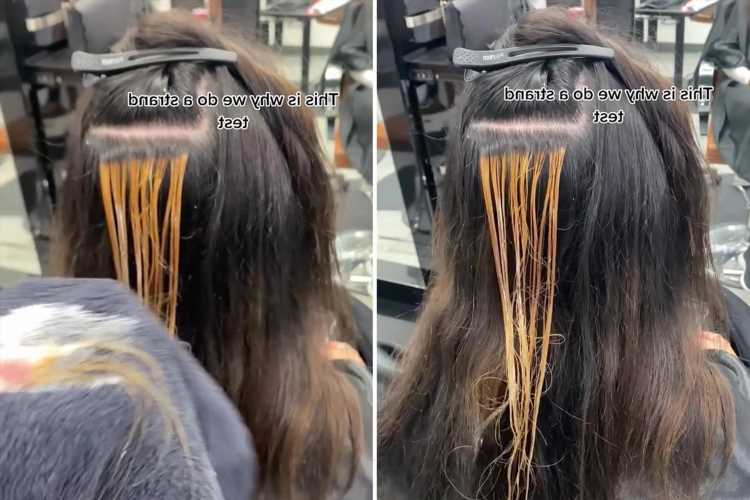 Hair stylist makes woman's hair frazzle to pieces when doing a strand test to show the dangers of box dye