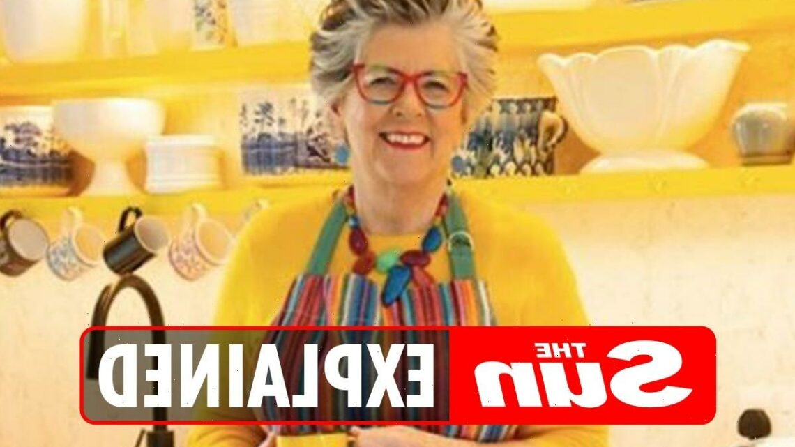 How old is Prue Leith and what's her net worth? – The Sun