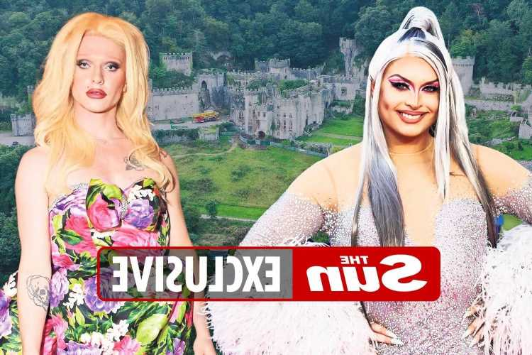 I'm a Celeb bosses want to cast show's first drag queen this year