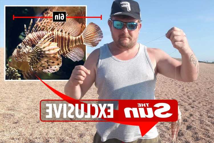 Man catches tiny but deadly six-inch lionfish in Dorset, the first in UK waters
