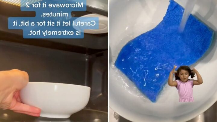 Mum claims we should be microwaving our kitchen sponges and shares the disgusting reason why