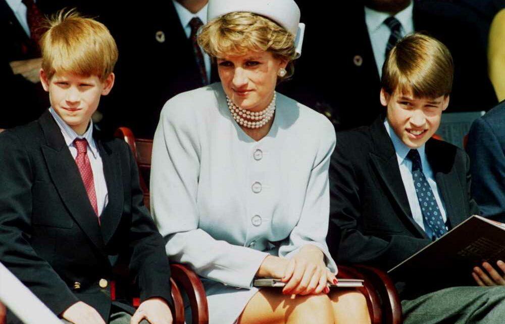 Princess Diana allegedly wanted to move to California with Harry, William