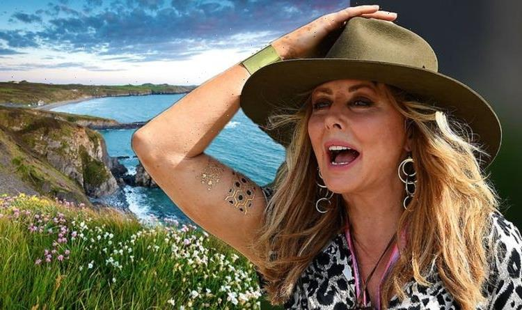 'I hate it!' Carol Vorderman fumes at selfish people littering in the 'beautiful country'