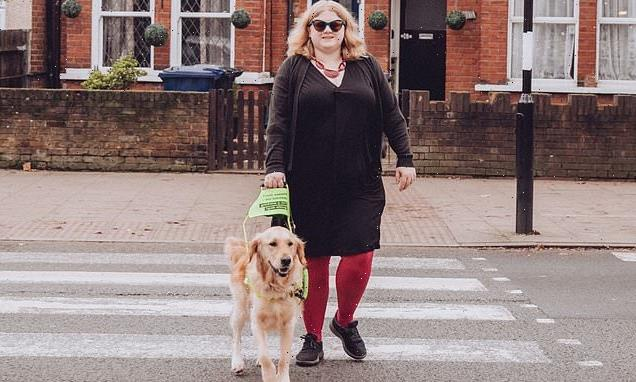 Experts warn people to avoid petting guide dogs