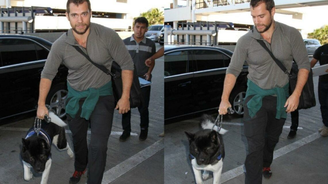 Henry Cavill's Dog Sports a Superman-Inspired Name
