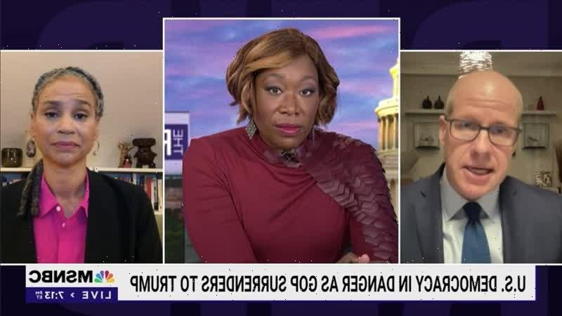 Joy Reid Slams Conservative Democrats for Being 'Willing to Let This Democracy Die' (Video)