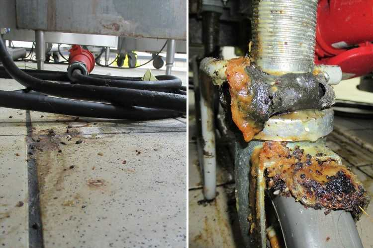 Shocking pictures inside McDonald's branch that had mice in kitchen and food on floor