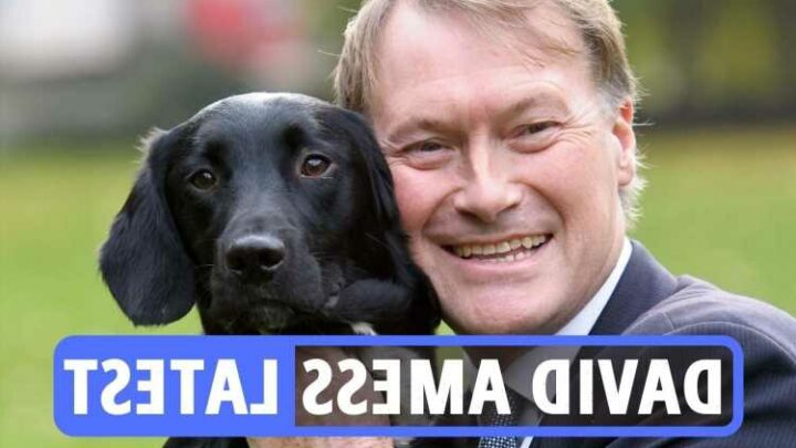 Sir David Amess news latest – Heartbroken family urge public to back Southend city status campaign in honour of slain MP