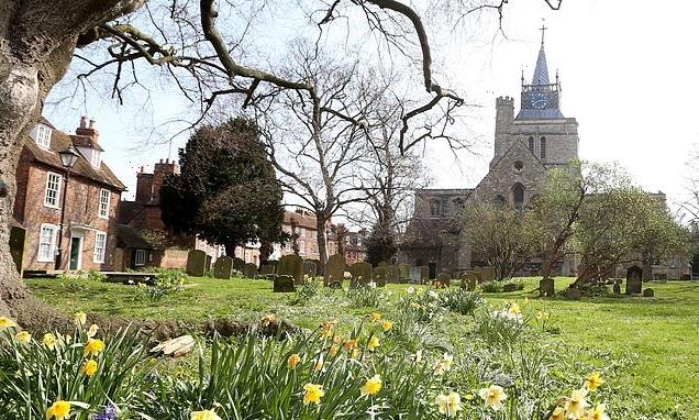 Woman in her 20s is 'raped by a stranger in a churchyard'